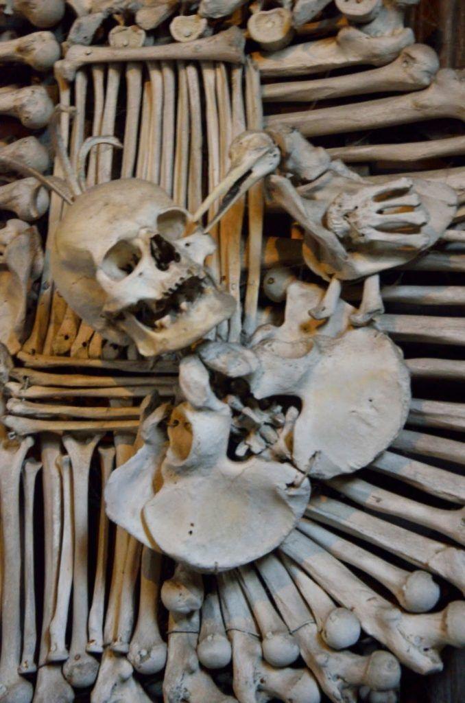 Detalle del escudo con cuervo hecho de huesos de Kutna Hora