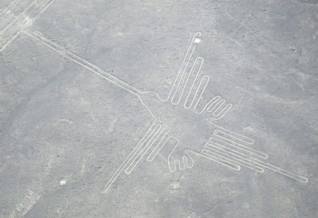 Línea del colibrí
