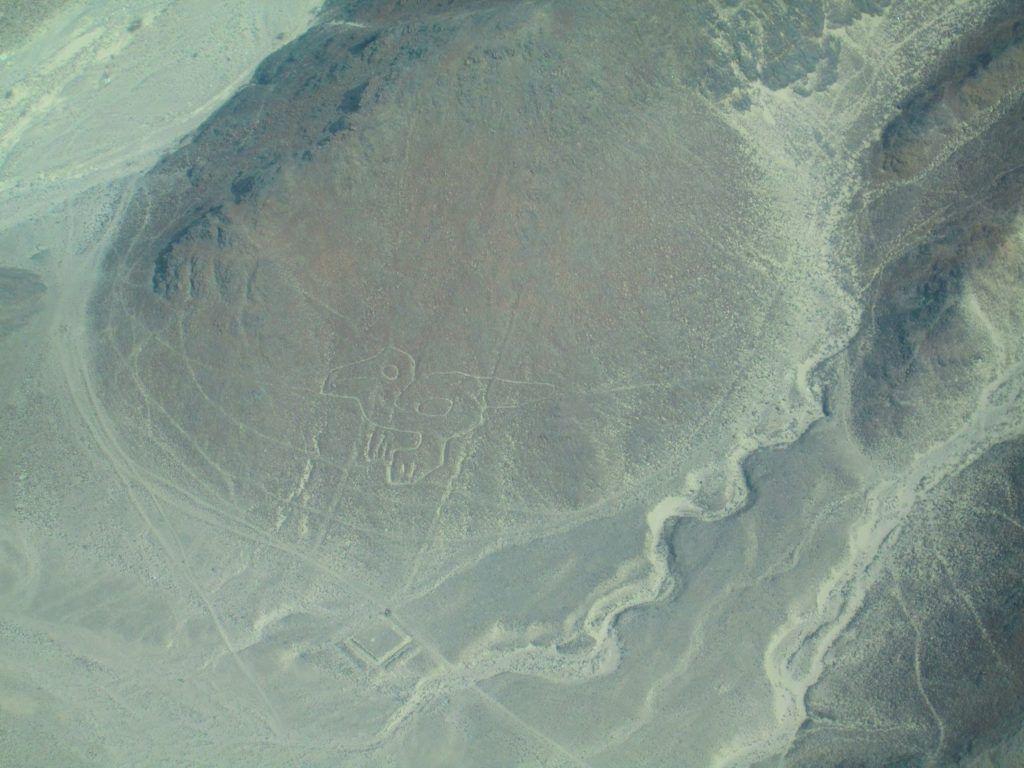El tucán de las lineas de Nazca