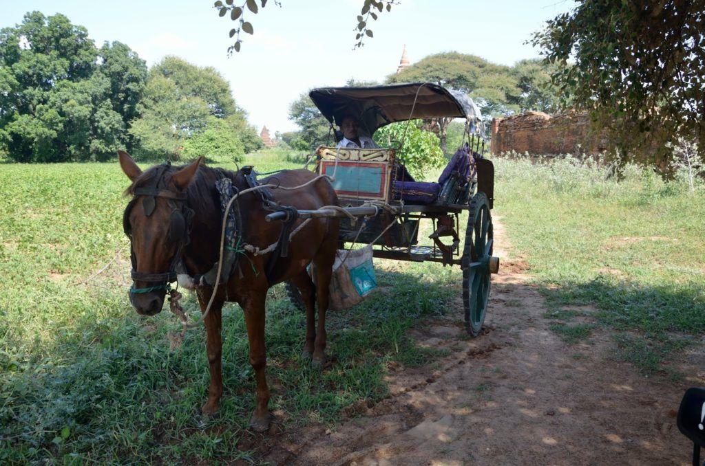 Coche de caballos de Bagán, Myanmar