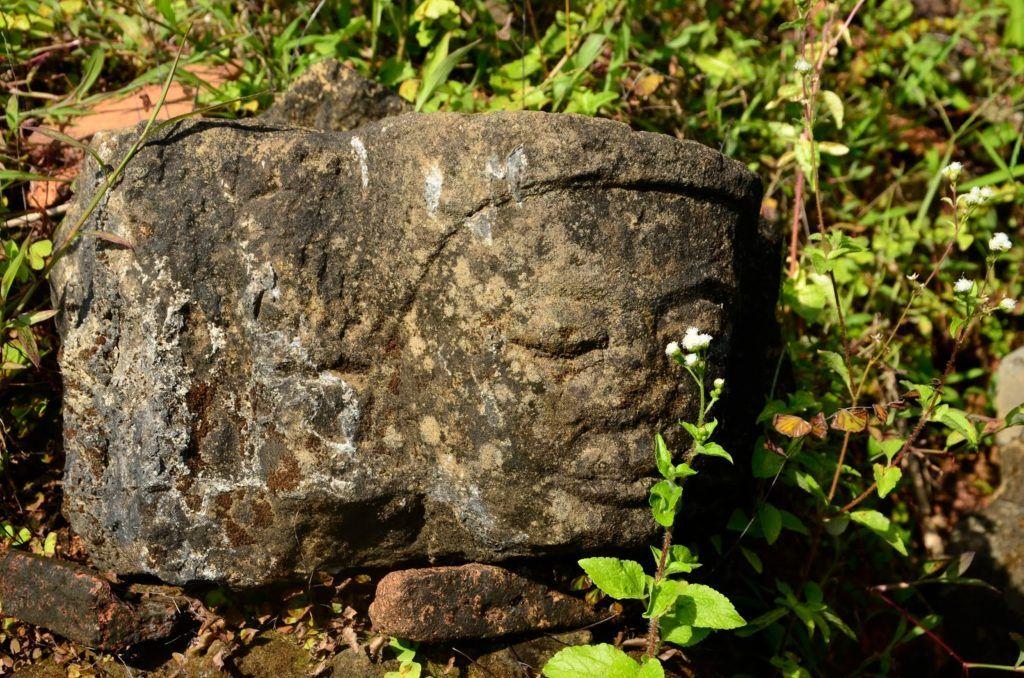 Cabeza de Buda en Mrauk U