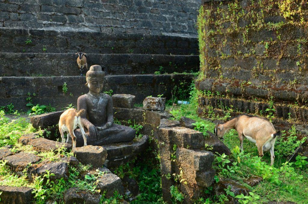 Cabras y Budas, juntos pero no revueltos en Mrauk U