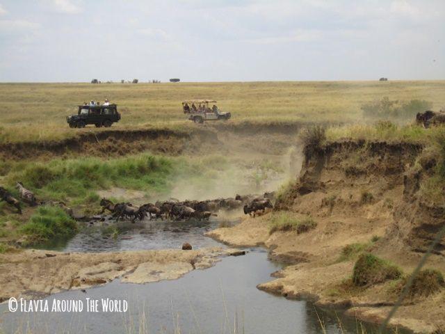 Salto de los ñúes en el río Mara