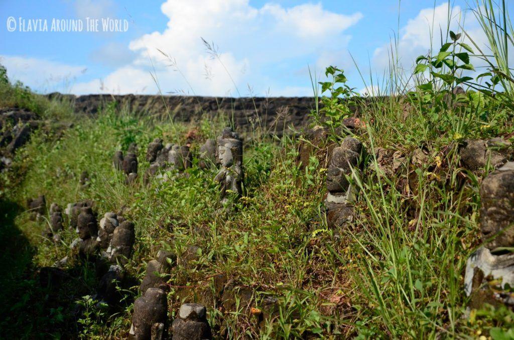 Budas enterrados entre la maleza en Koethaung, Mrauk U, Myanmar