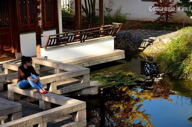 De relax en el jardín de la hermosa melodía