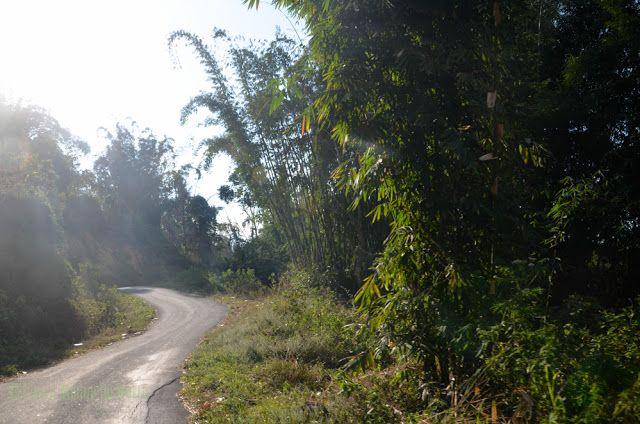 Carretera de Flores