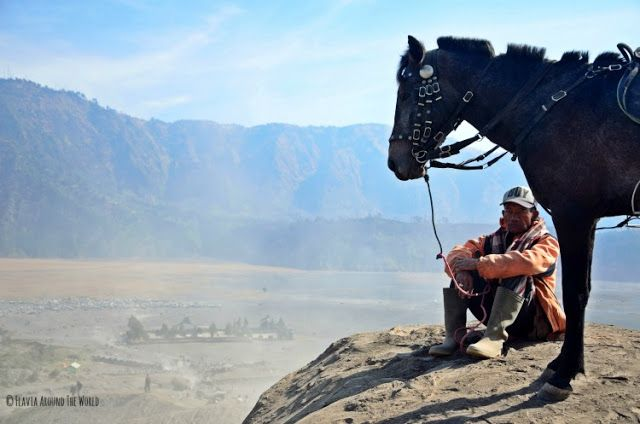 caballo monte bromo