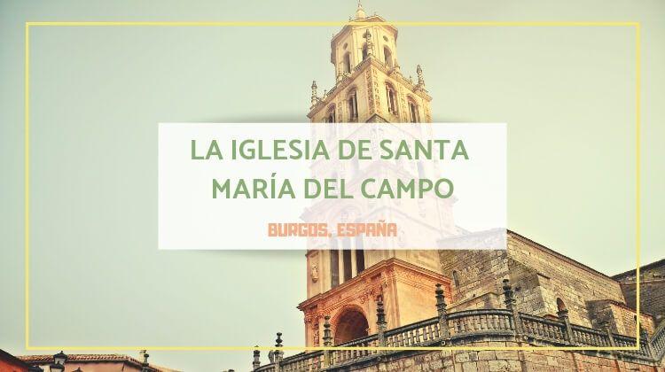 La iglesia que debería ser catedral de Santa María del Campo (Burgos)